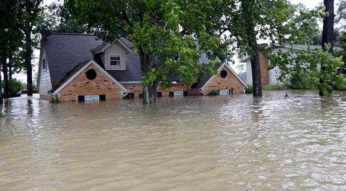 Mơ thấy lũ lụt đánh con gì