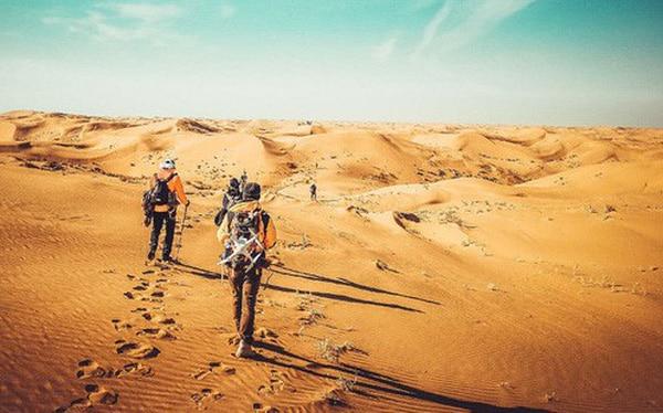 Mơ lạc vào sa mạc